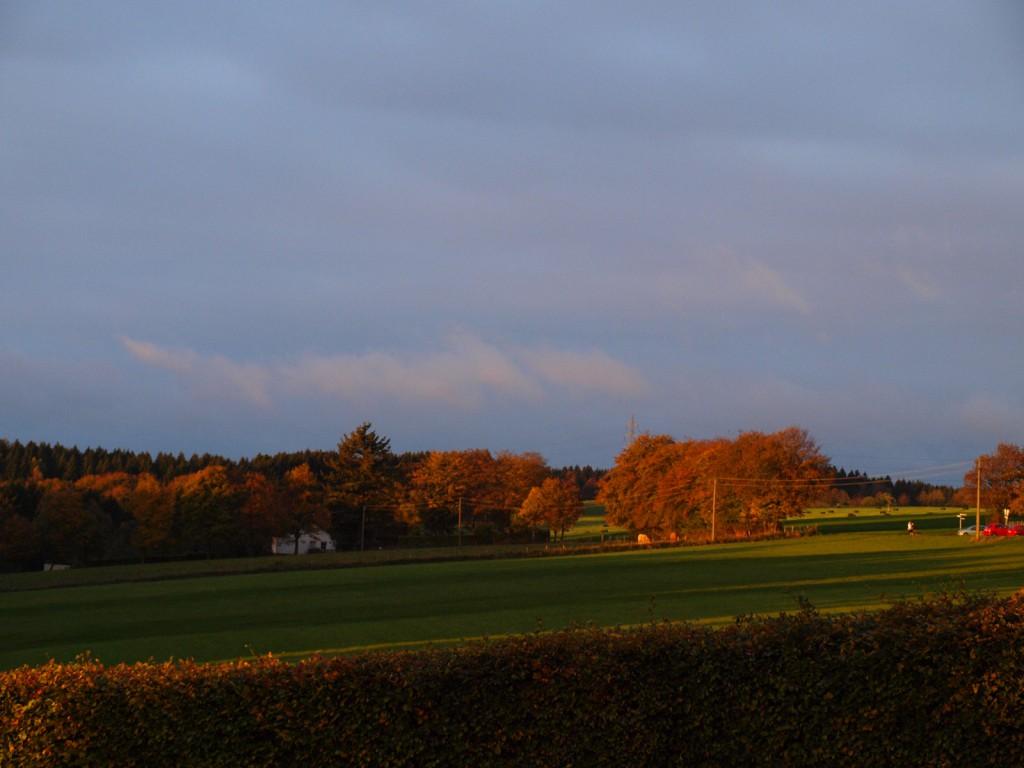 Herbstlaune im Hotel Haus Seeblick